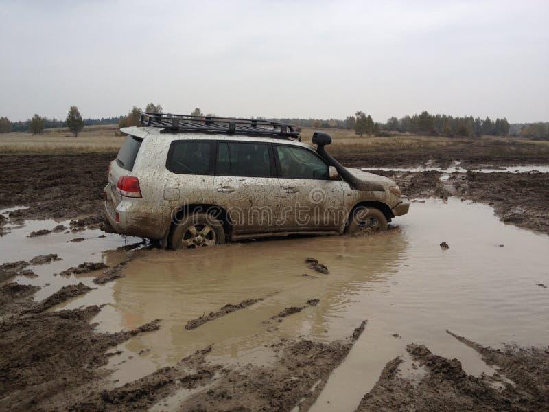 Toyota landcruiser stockfotos
