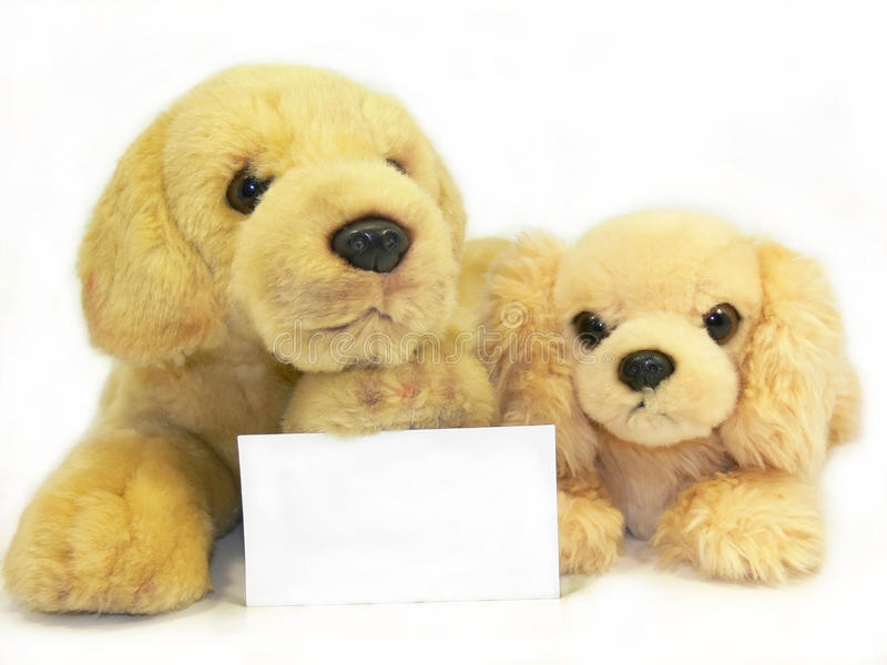 Toys. Two dogs with a greeting card royalty free stock photos