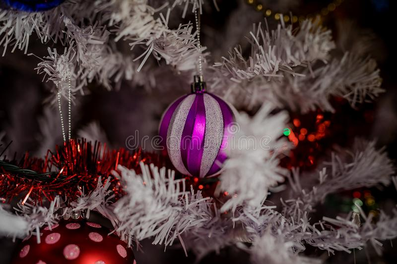 Toys on the Christmas tree for the new year. Christmas toys and a black cat. New year. Beautiful holiday royalty free stock photo