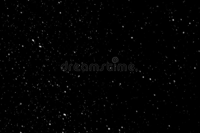 toys den svarta julen för bakgrund fyra snowflakes för prydnadar s för päls nya treewhiteår royaltyfria foton