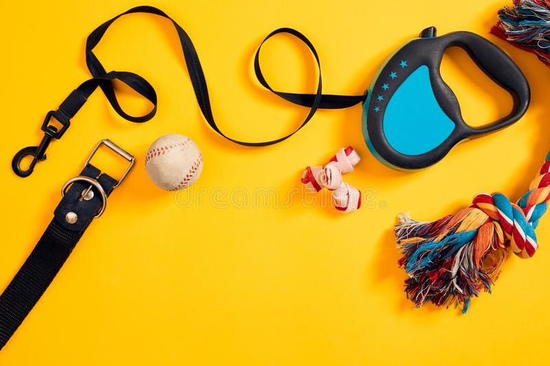 Toys -multi coloured rope, ball, leather leash and bone. Accessories for play and training on yellow background top view. Still life. Copy space. Flat lay stock photos