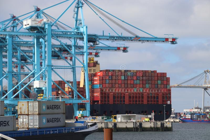 TPM seafreight container terminal on the Maasvlakte in the port of Rotterdam in the Netherlands stock image