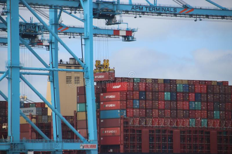 TPM seafreight container terminal on the Maasvlakte in the port of Rotterdam in the Netherlands royalty free stock image