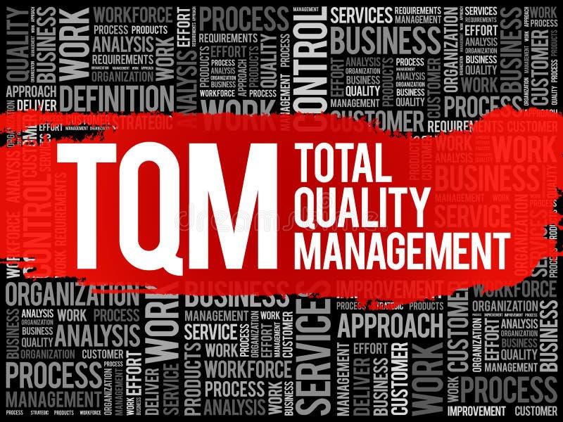 TQM -全面质量管理词云彩 皇族释放例证