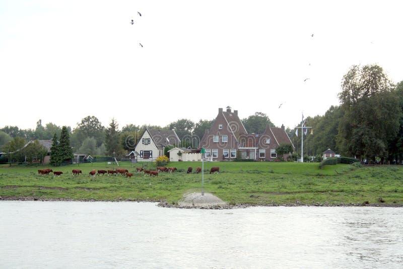 Tráfego e vista no rio IJssel foto de stock