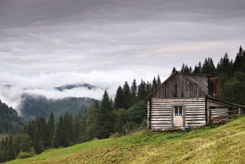 träövergivet hus fotografering för bildbyråer