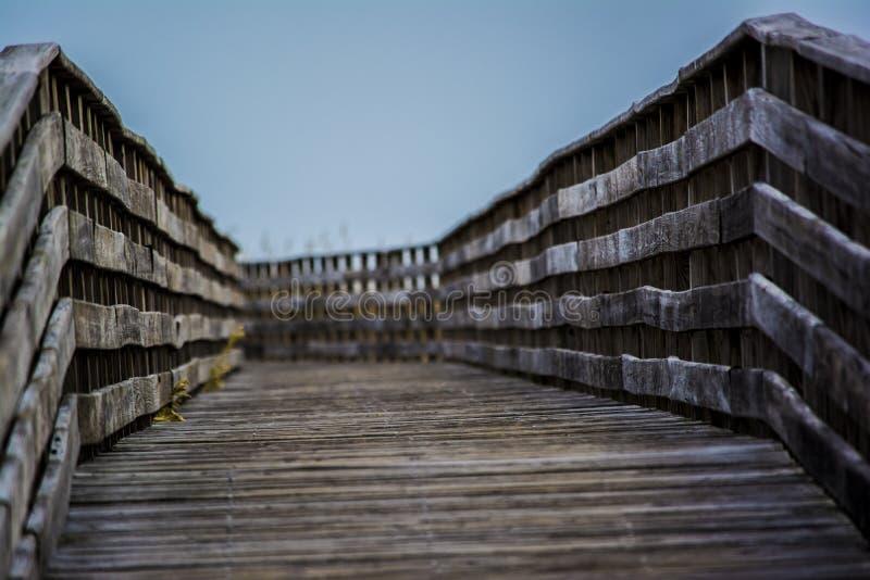 Trä överbrygga på stranden royaltyfri bild