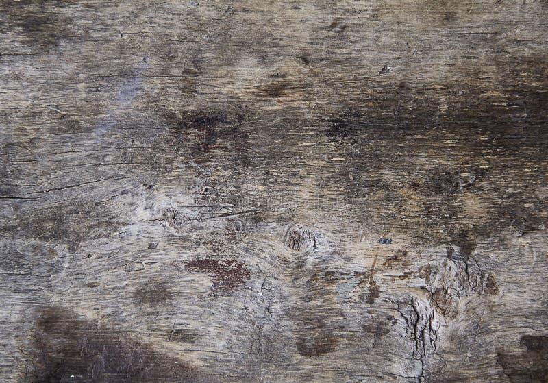 Trä för bakgrunder royaltyfria foton