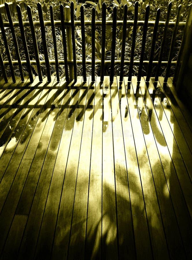 trä för staketuteplatssolljus arkivbild