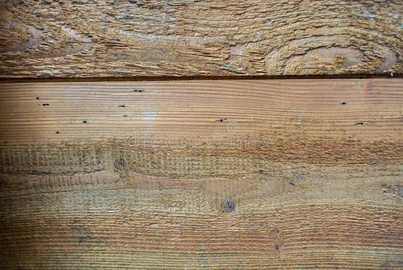 trä för textur för bakgrundsdetaljkorn arkivfoton