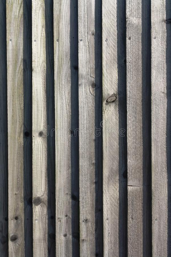 Trä panelled trädgårds- staketbakgrund royaltyfri bild
