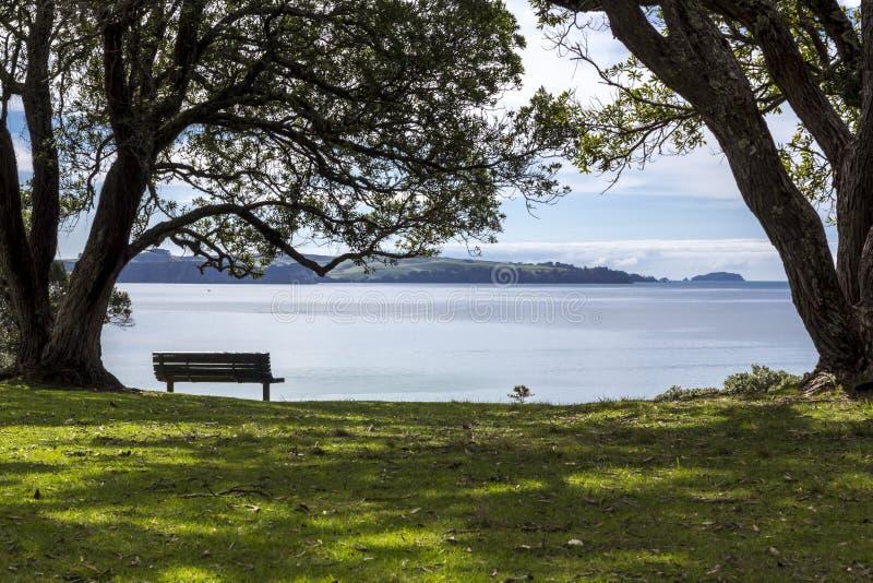 Trä parkera bänken under träd som förbiser havet arkivfoton