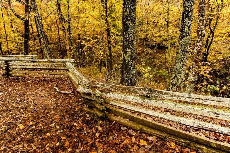 Trä Rail Fence Natchez Trace Parkway 2 arkivfoto