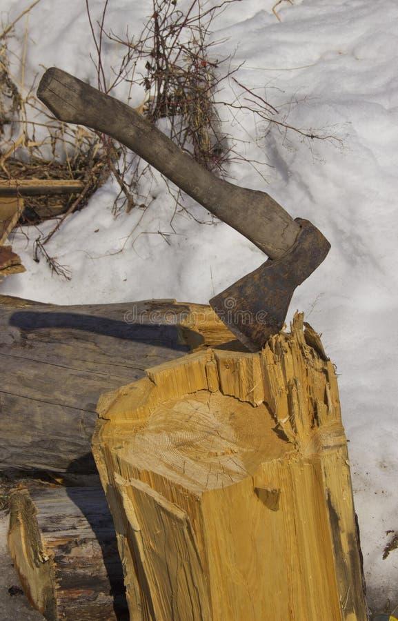 Trä som hugger av yxan royaltyfria foton