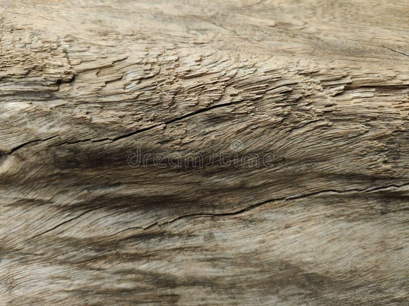 Trä som textureras med skugga och hilight arkivfoton