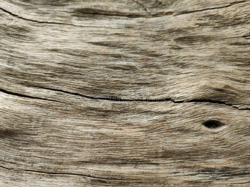 Trä som textureras med sprucket royaltyfri fotografi