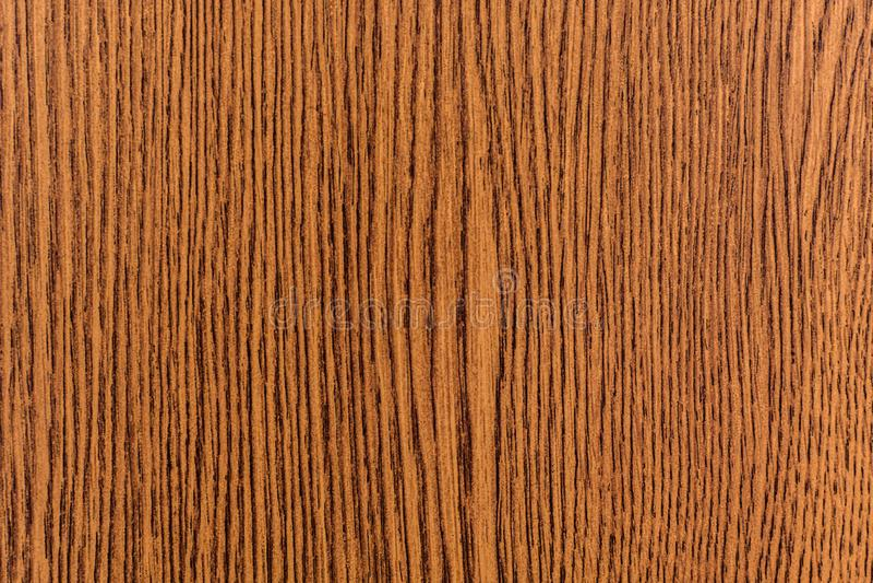 Trä textur royaltyfri bild