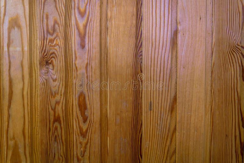 Trä textur royaltyfri fotografi