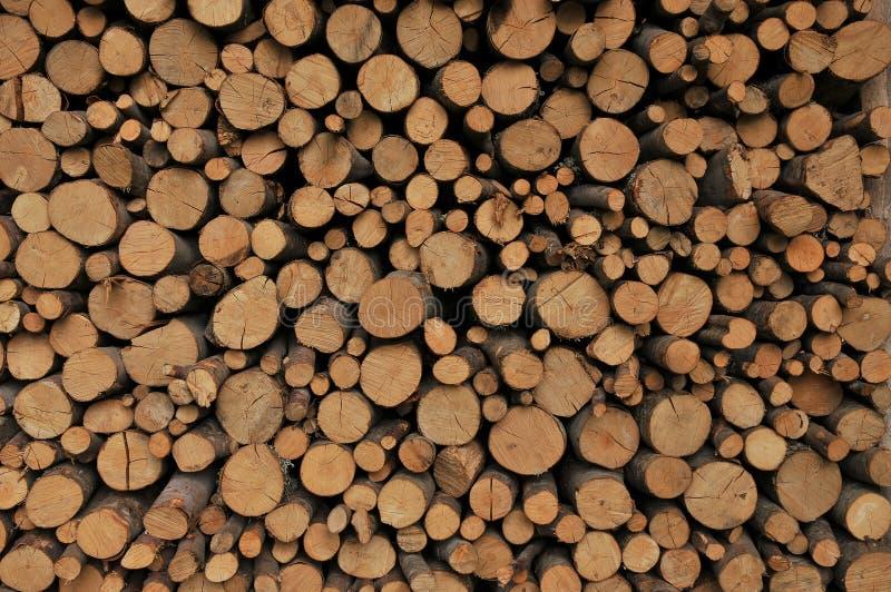 Trä-textur royaltyfria foton