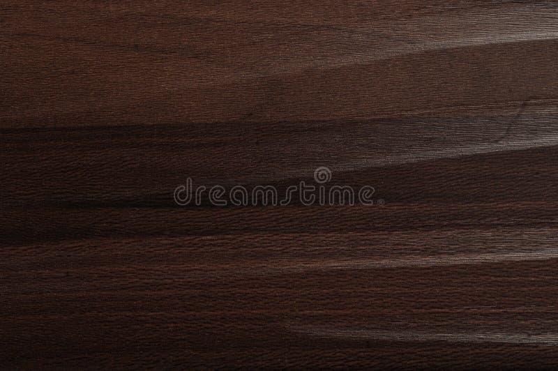 Trä texturera fotografering för bildbyråer