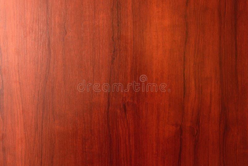 Trä texturera bakgrund arkivbilder