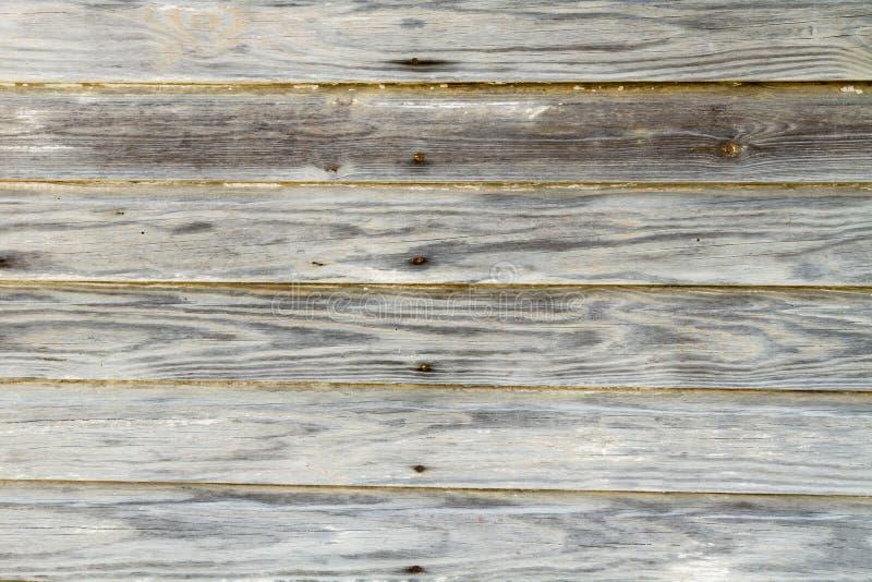 Trä texturerad bakgrund arkivbild