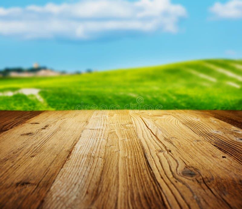 Trä texturerade bakgrunder royaltyfria bilder