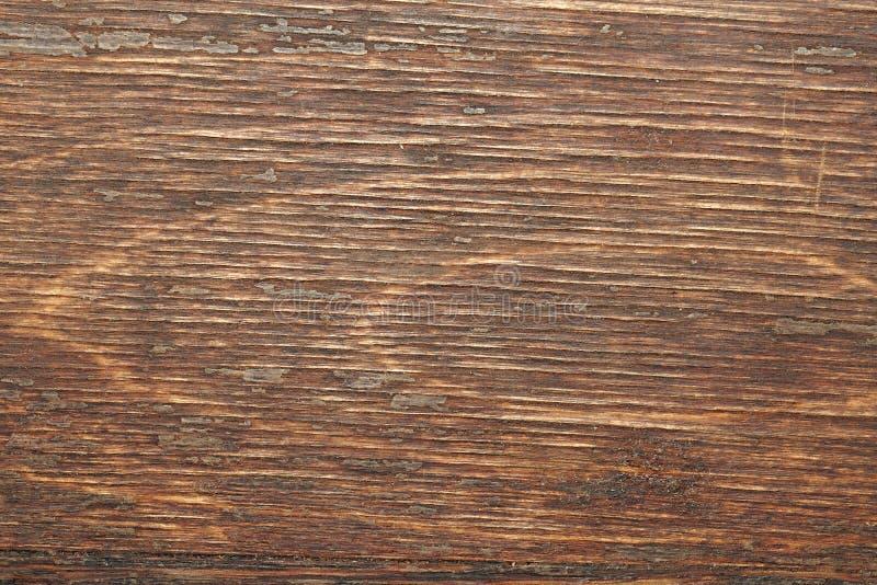 Trä texturerar royaltyfri foto