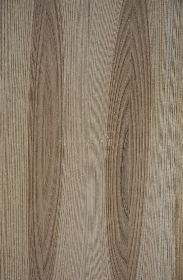 Trä texturerar Linjerna lokaliseras i en ellips fotografering för bildbyråer