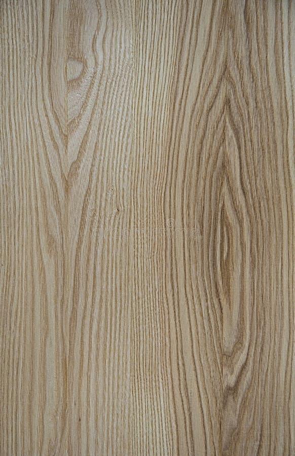 Trä texturerar Linjerna lokaliseras i en ellips arkivfoto