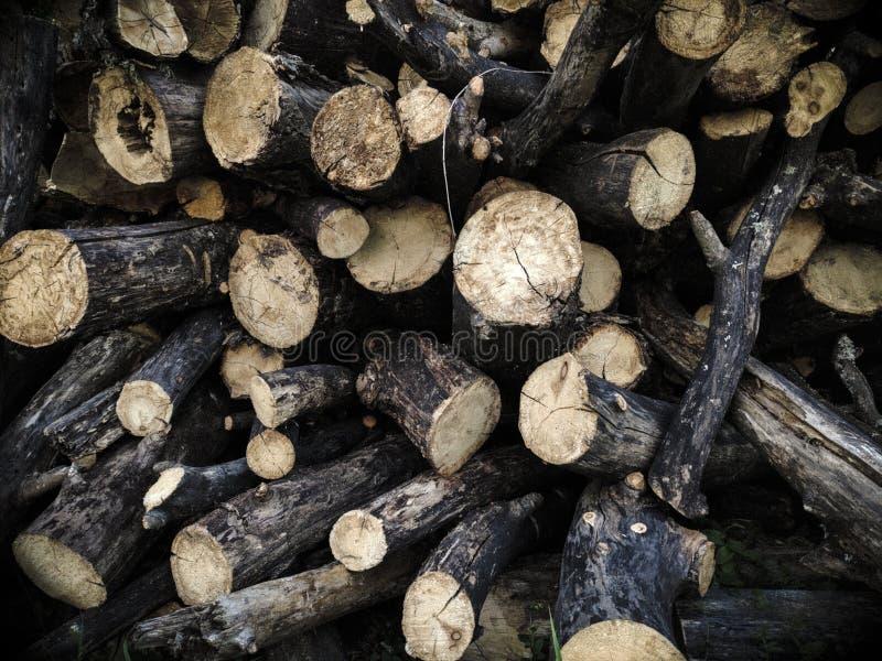 Trä travde i en hög arkivfoto