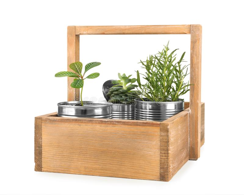Träask med aluminiumburkar som används som behållare arkivfoton