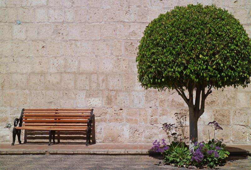 Träbänk och ett rundat träd mot den Sillar stenväggen, Arequipa, Peru, Sydamerika royaltyfri bild