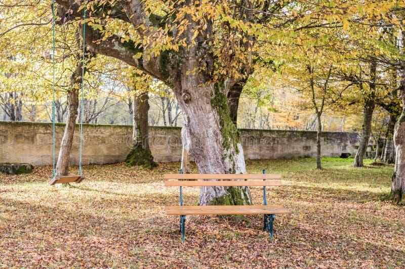 Träbänken och gunga i hösten arbeta i trädgården arkivfoton