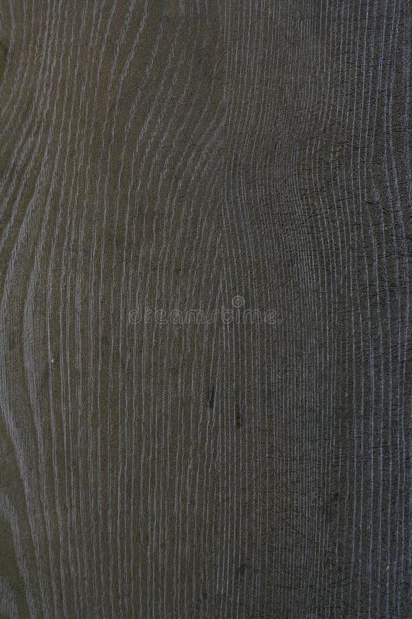 träbakgrund royaltyfri fotografi