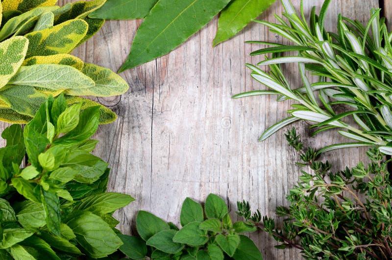 Träbakgrund för ny örtram arkivfoto