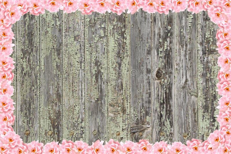 Träbakgrund som inramas med rosor royaltyfri bild