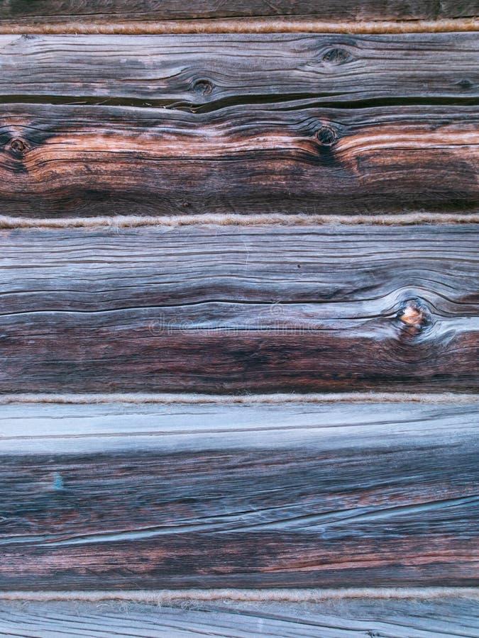 Träbakgrundstextur i lodlinje royaltyfria bilder