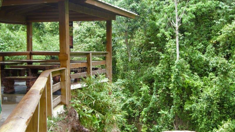 Träbalkong av en restaurang bredvid en tropisk djungel arkivbild