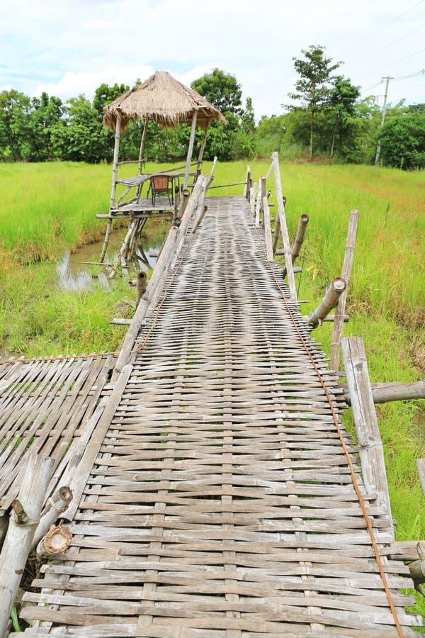 Träbambugångbanabro som korsar risfältfältet för att förlägga i barack royaltyfri bild