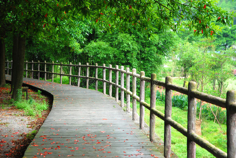 Träbana och handrail arkivfoton