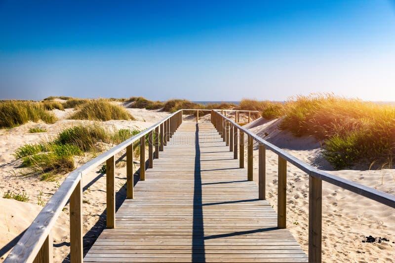 Träbana på den Costa Nova d'Aveiroen, Portugal, över sanddyn med havsikt, sommarafton Träspång av Costa Nova royaltyfria bilder
