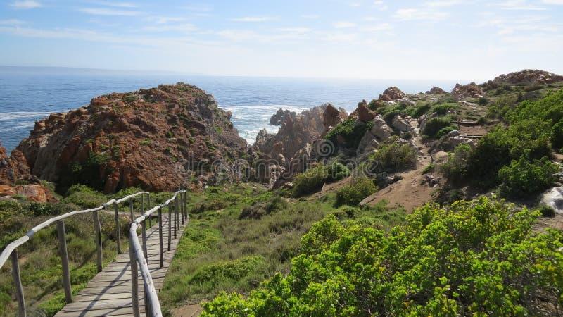 Träbanan och slingan med havet vaggar och vegetation royaltyfria bilder