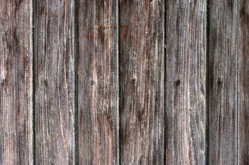 träbräden med åder royaltyfri foto