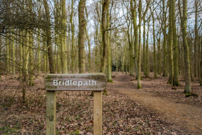 TräBridlepath tecken sett närgränsande till en gjord klar bana i en skog royaltyfri bild