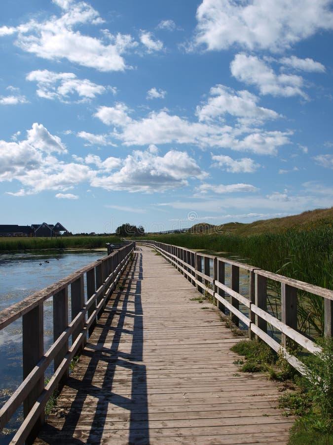 Träbrigde över sjön av skinande vatten, prins Edward Island, Kanada royaltyfri foto
