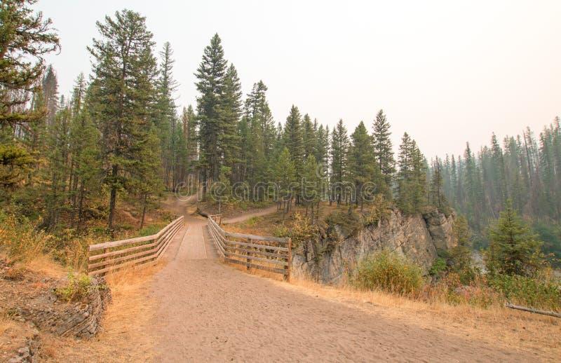 Träbro över ängliten vikklyftan för att fotvandra och hästryggemballageslinga i det Bob Marshall Wilderness området i Montana USA royaltyfri bild