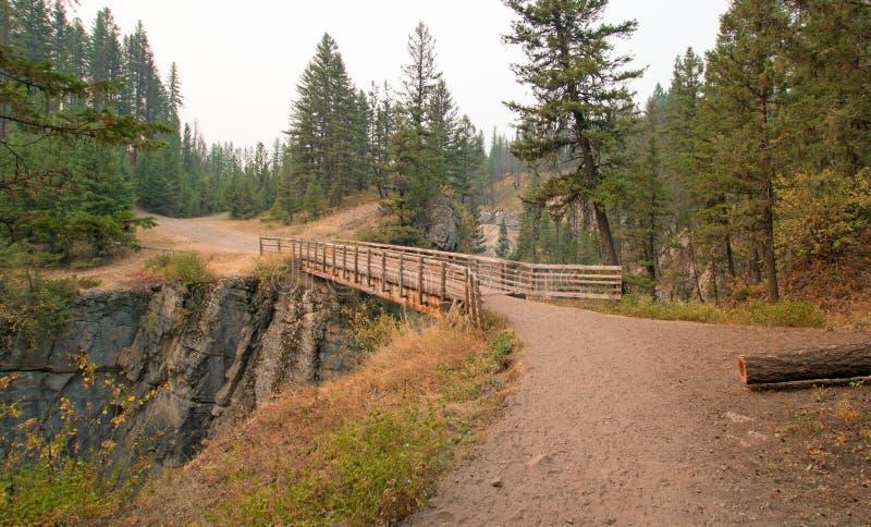 Träbro över ängliten vikklyftan för att fotvandra och hästryggemballageslinga i det Bob Marshall Wilderness området i Montana USA royaltyfri fotografi
