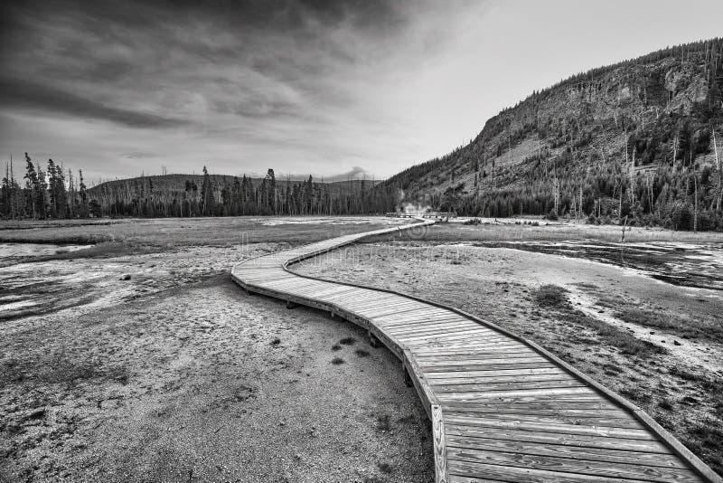 Träbro över ångande terräng i den Yellowstone nationalparken royaltyfria foton