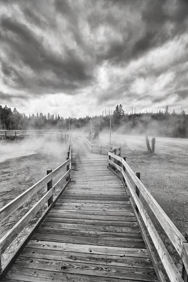 Träbro över ångande terräng i den Yellowstone nationalparken fotografering för bildbyråer